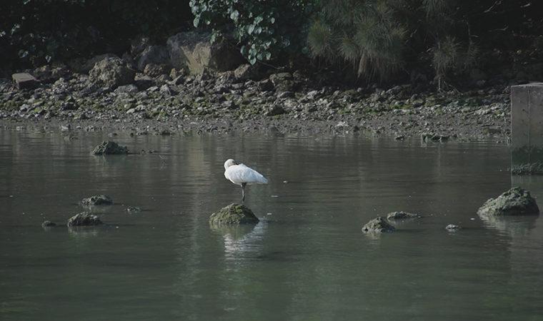 KUNIHIRO NAKACHI