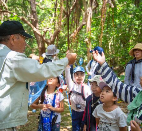 「ようこそ、森の教室へ!」〜大野山林自然散策〜
