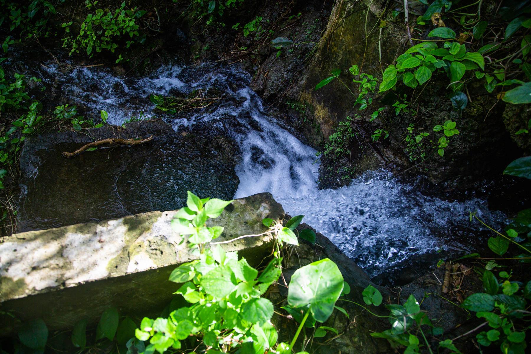 ふるさと納税を活用した取り組み・地下水水質調査(環境衛生課)
