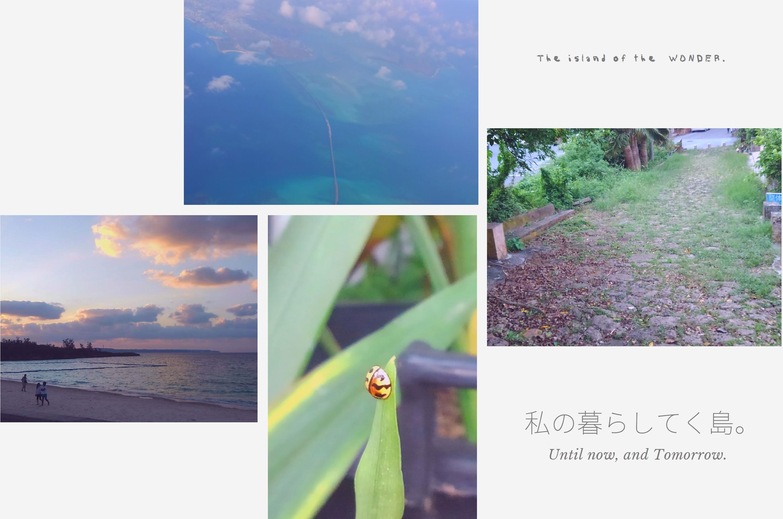 私の暮らしてく島 sanae ikema