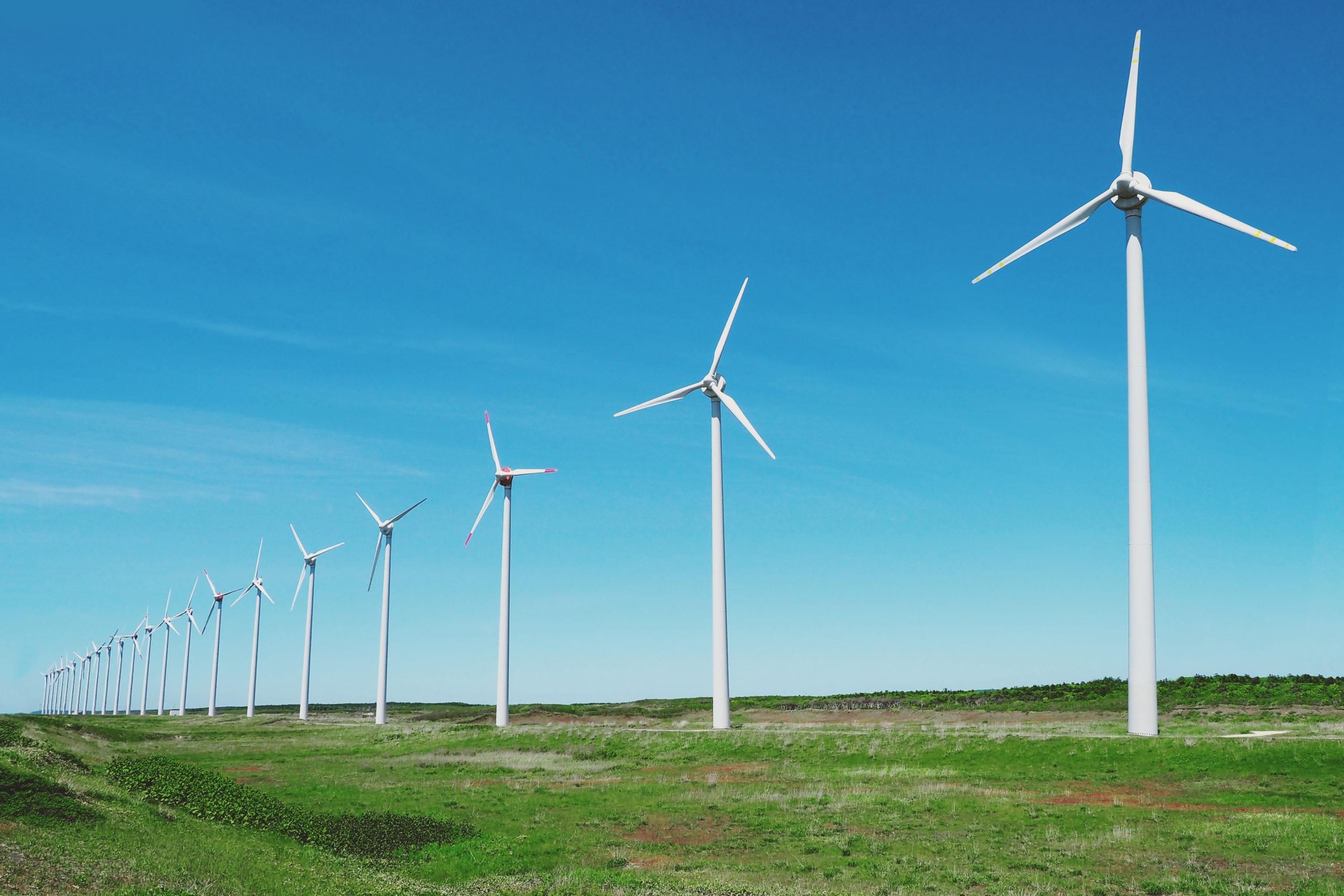 自然エネルギーで電力イノベーションを!ハチドリ電力の新しい電力のカタチとは?